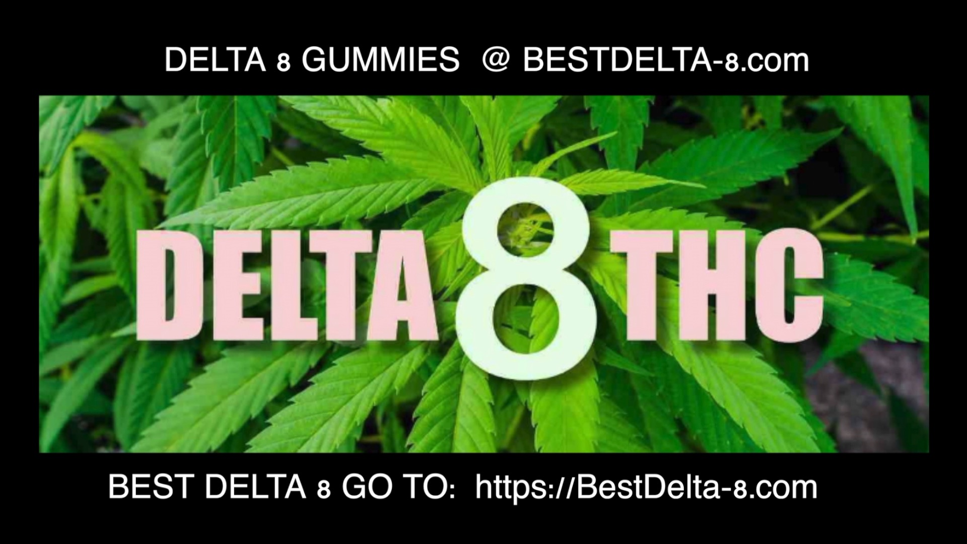 best delta 8, delta-8, delta 8 for sale, how to buy delta 8, strongest delta-8, where to buy delta 8, best delta 8 online, best delta eight for sale,